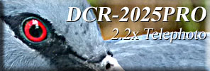 Click and go to DCR-2025PRO